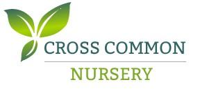 Cross Common Nursery
